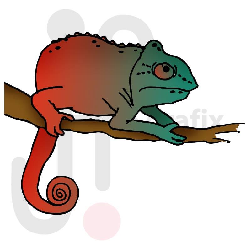 Chamäleon 006 farbig