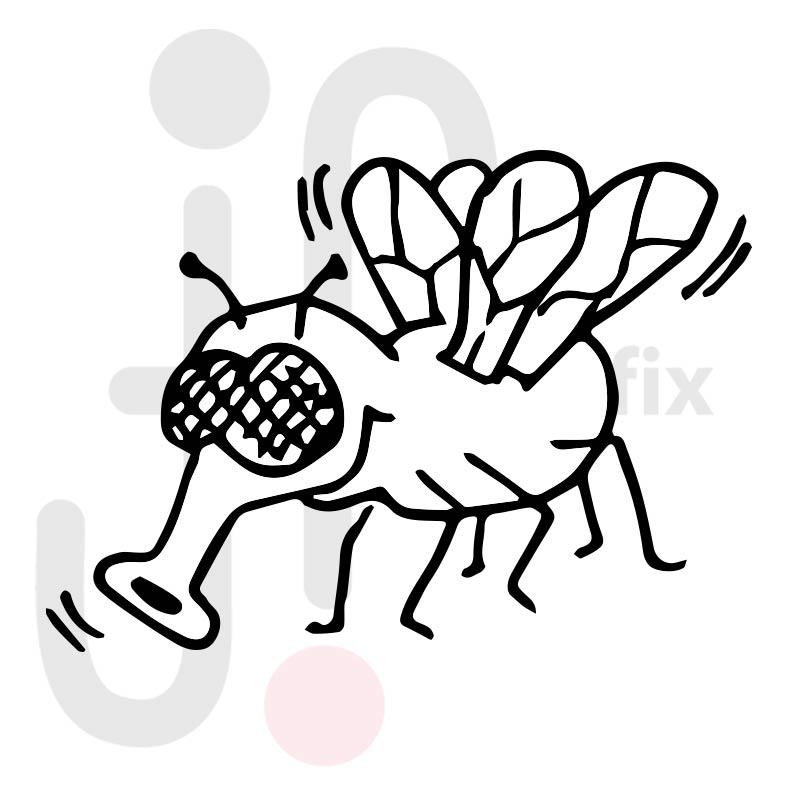 Fliege 001