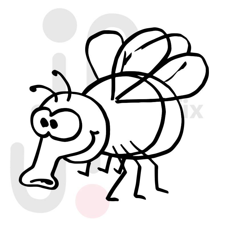 Fliege 003
