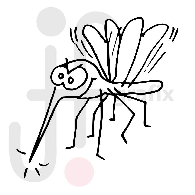 Fliege 010