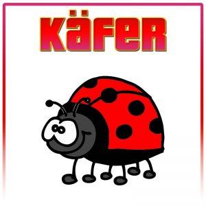 (Marien-)Käfer