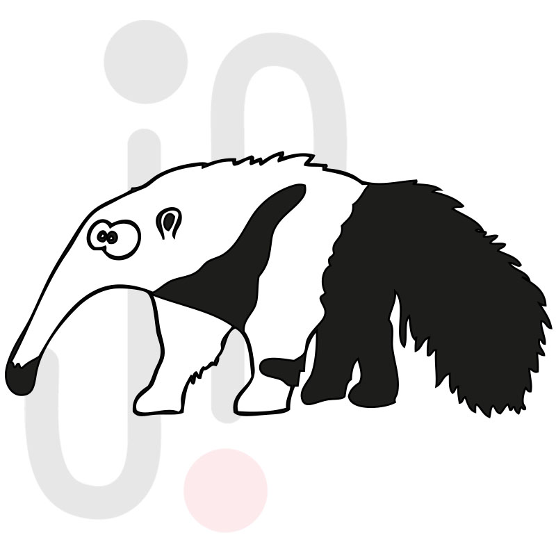 Ameisenbär 001