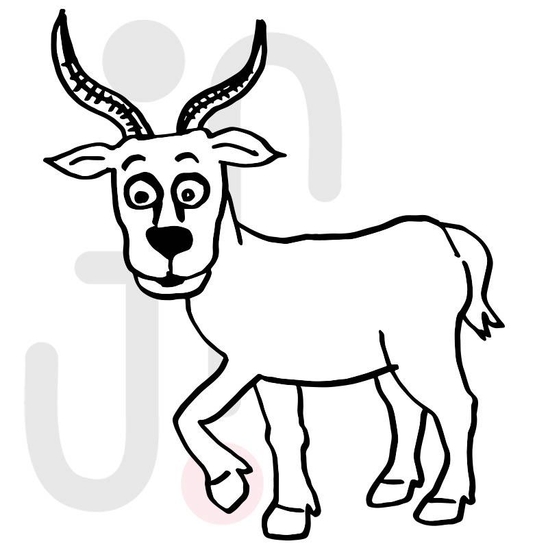 Antilope 002