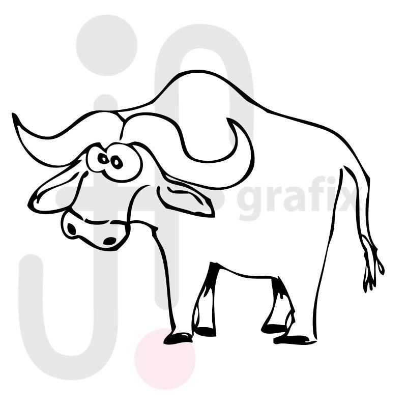 Büffel 001