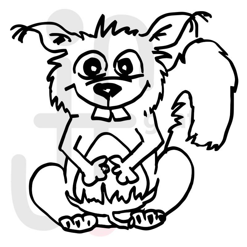 Eichhörnchen 006