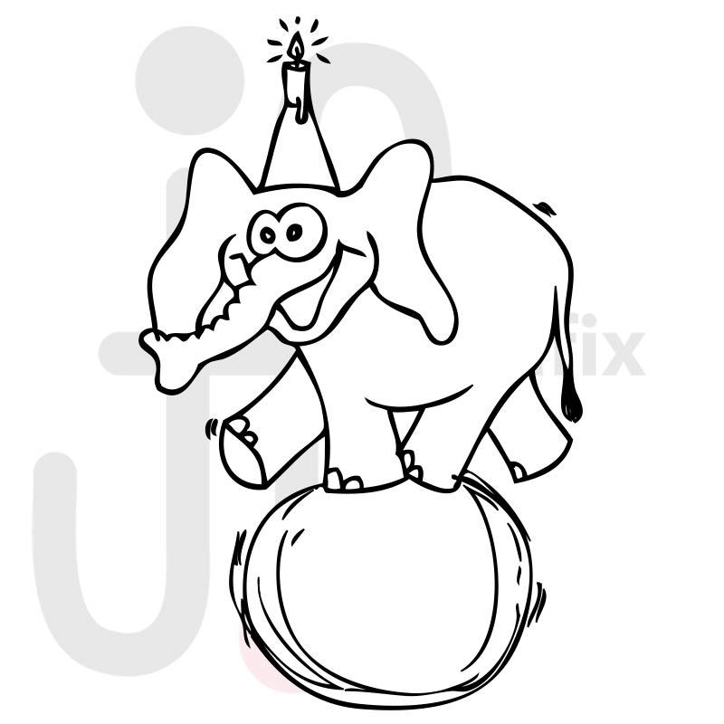 Elefant 004