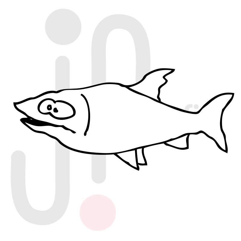 Fisch 007