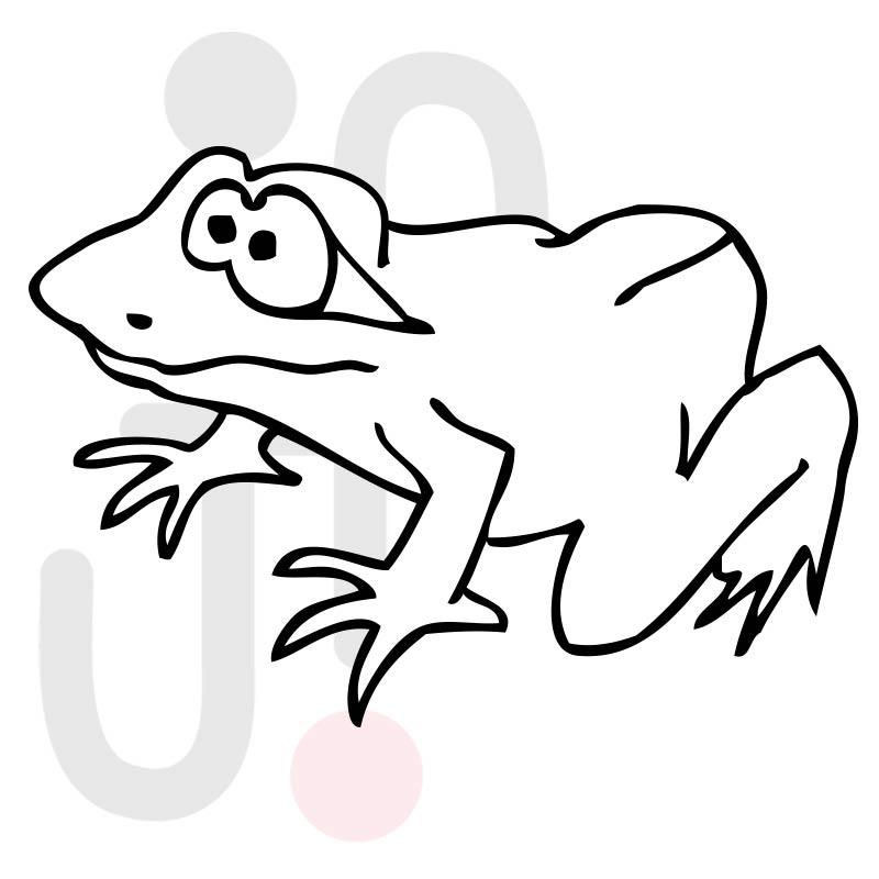 Frosch 008