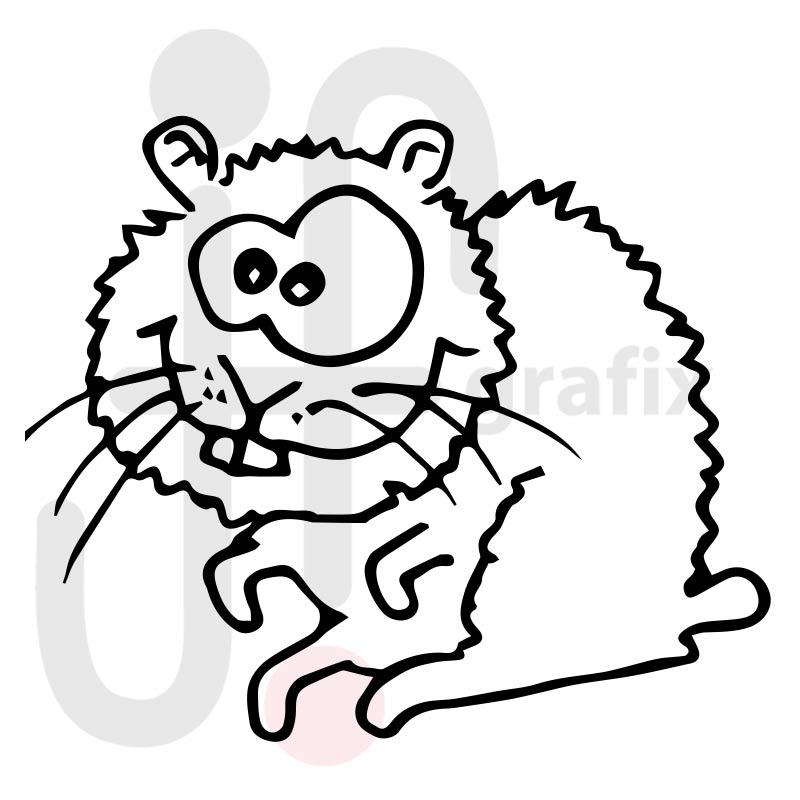 Hamster 004