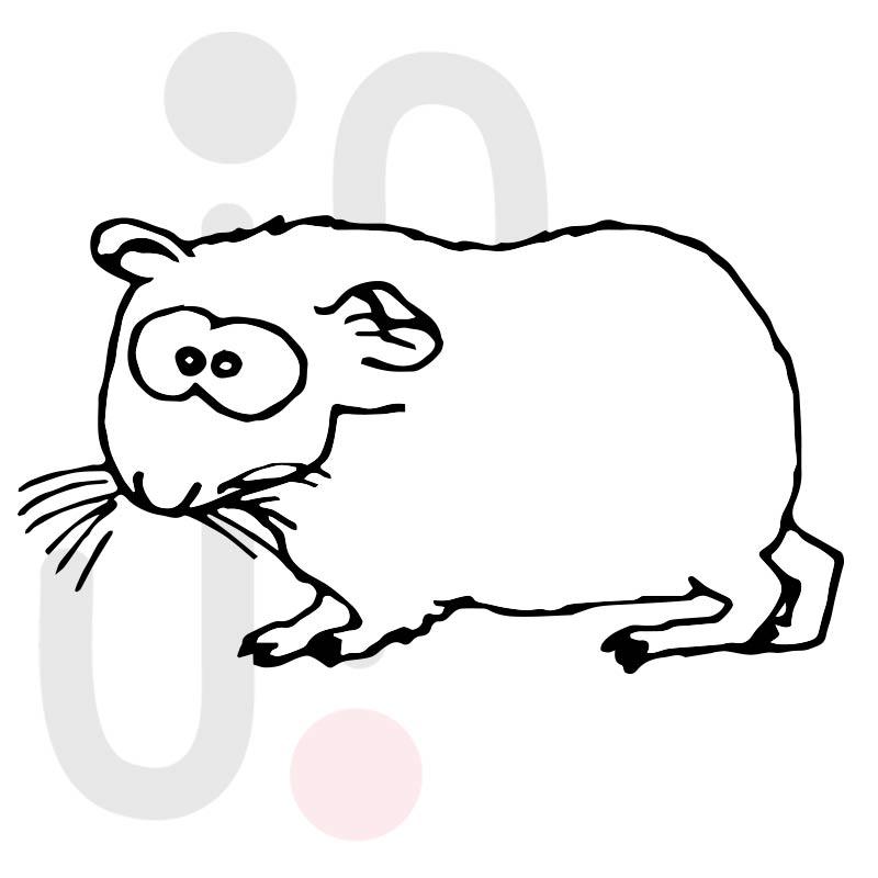 Hamster 005