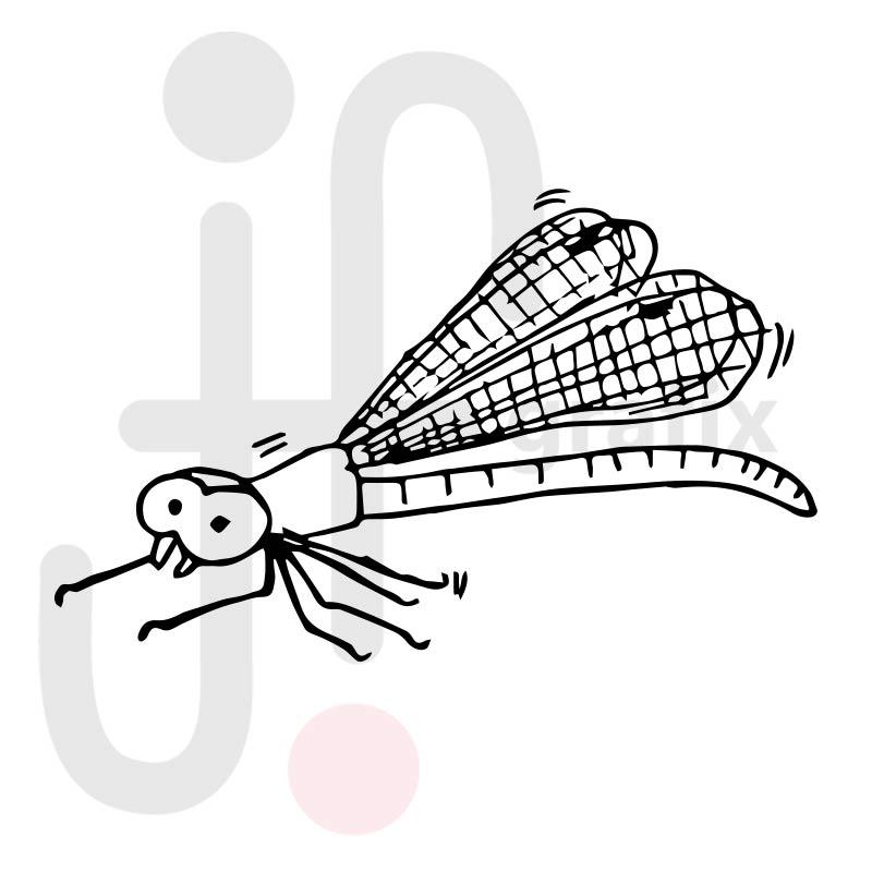 Libelle 001