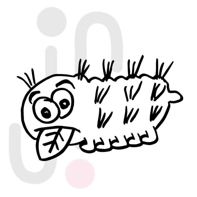 Raupe 019