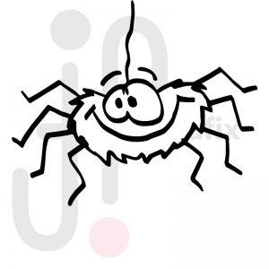 Spinne 001