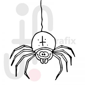 Spinne 004