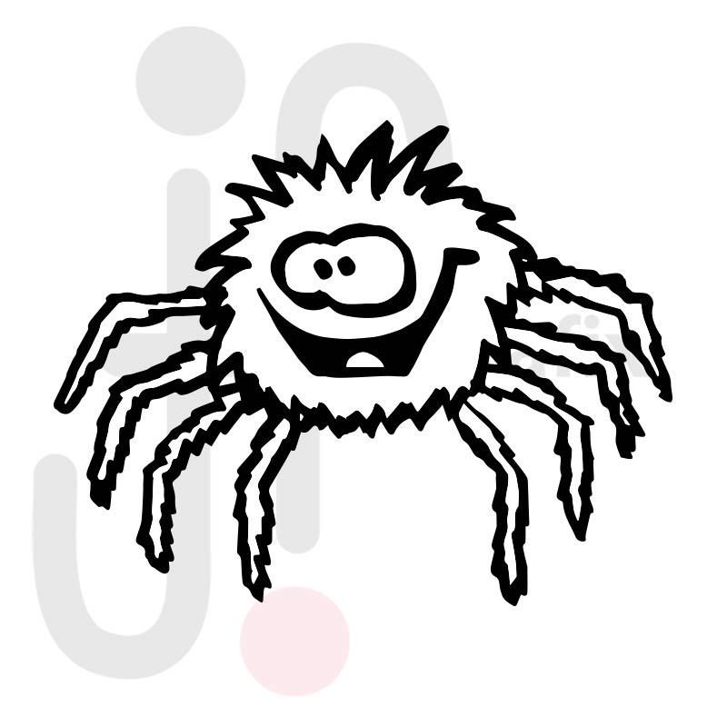 Spinne 005
