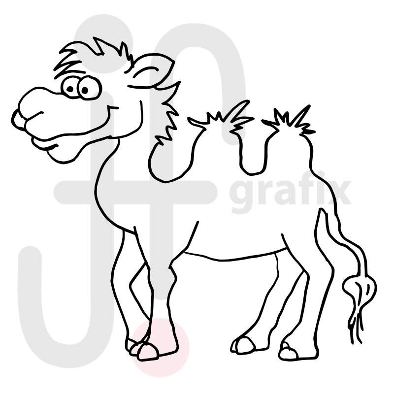 Kamel 001