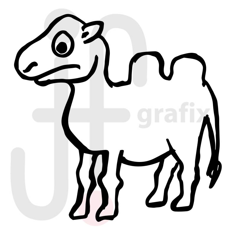 Kamel 004