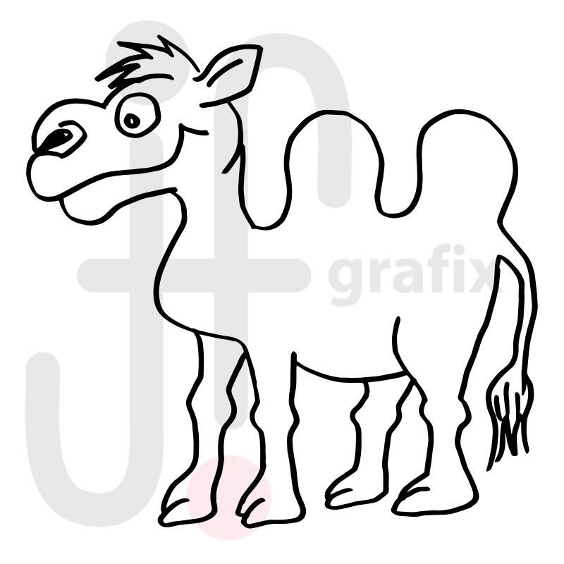 Kamel 006