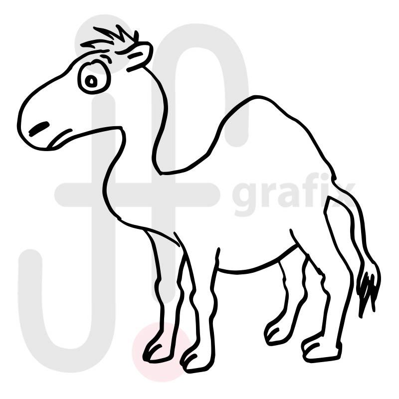 Kamel 008