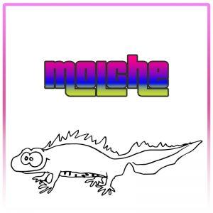 Molche