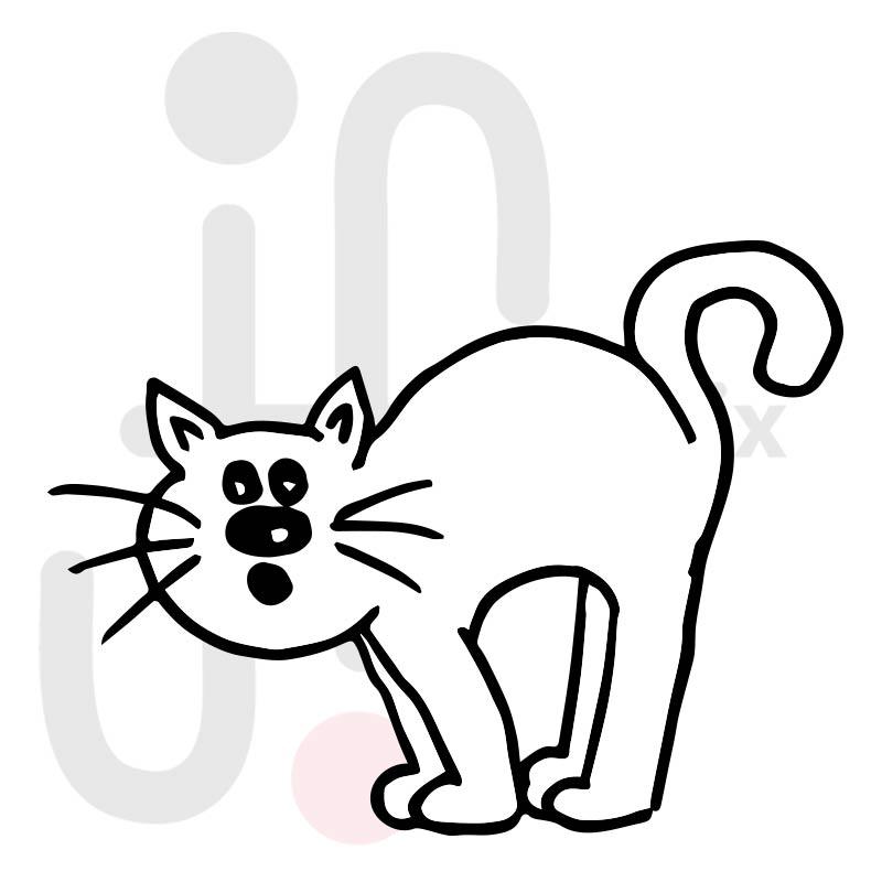 Katze 008
