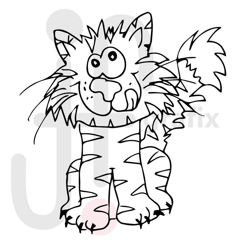 Katze 015