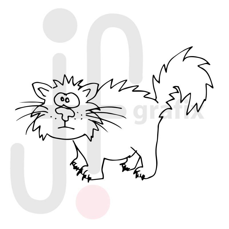 Katze 017