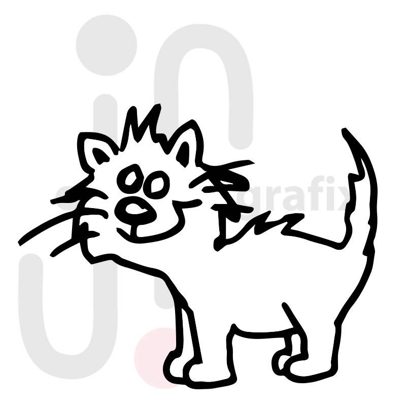 Katze 018