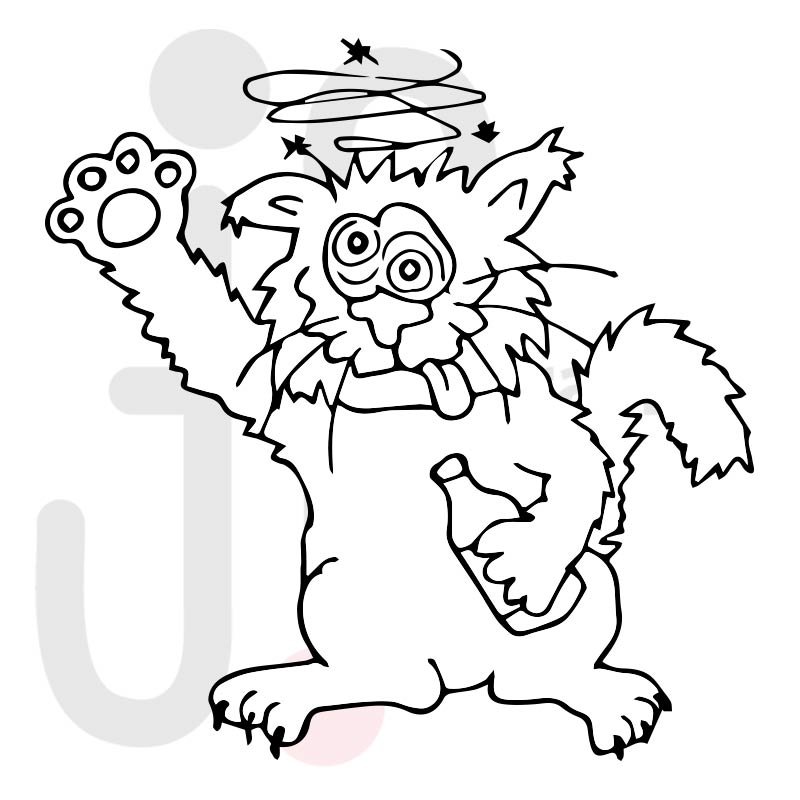Katze 028