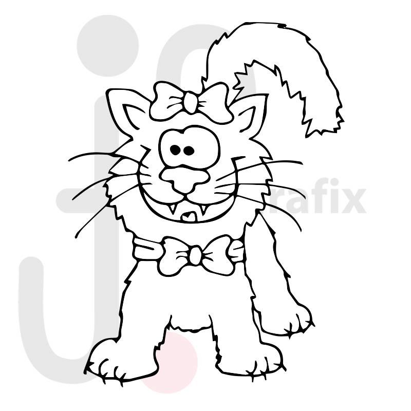 Katze 029