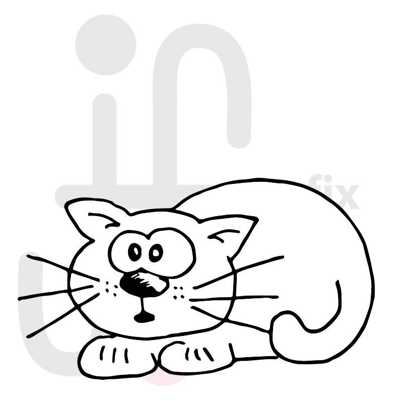 Katze 033
