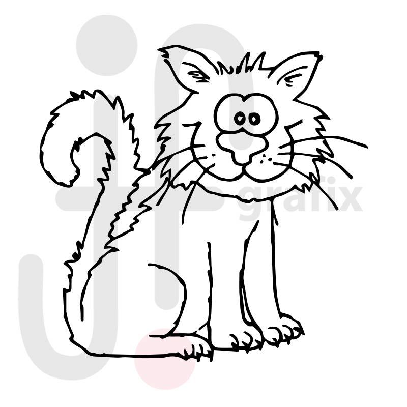 Katze 035