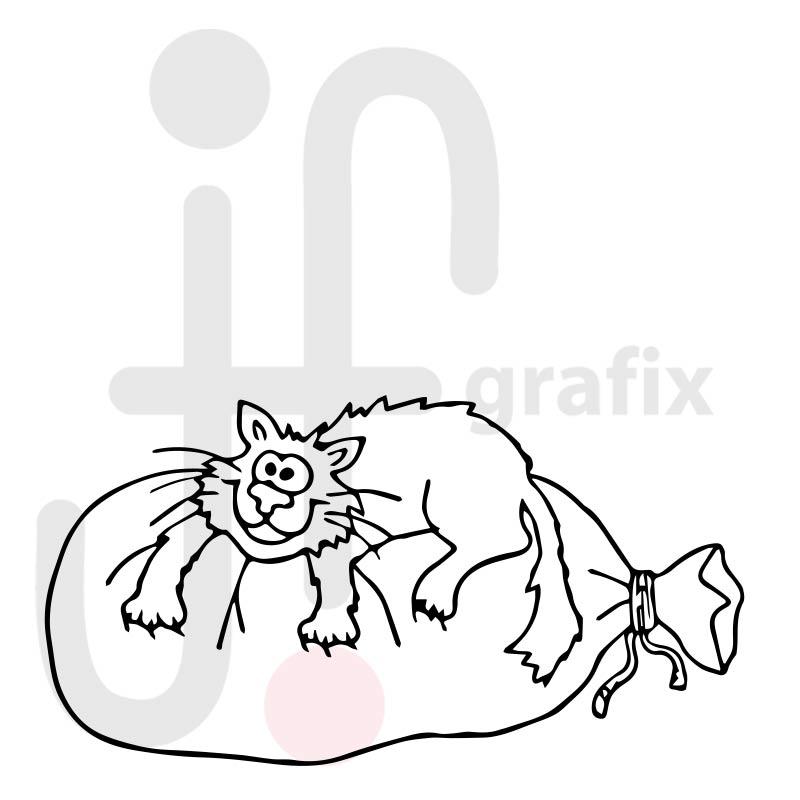 Katze 039