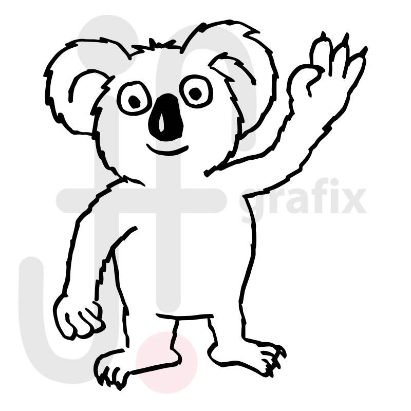 Koala 003