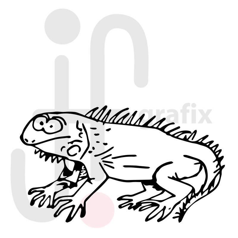 Leguan 001