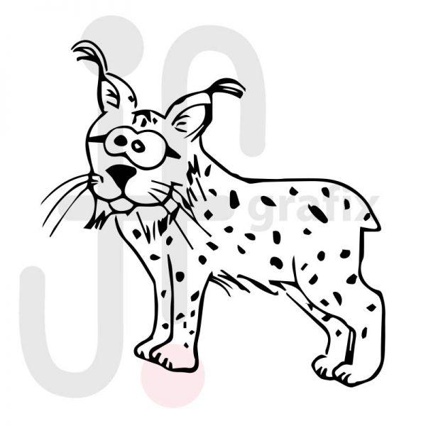 luchs 001  tierisch gut tierbilder
