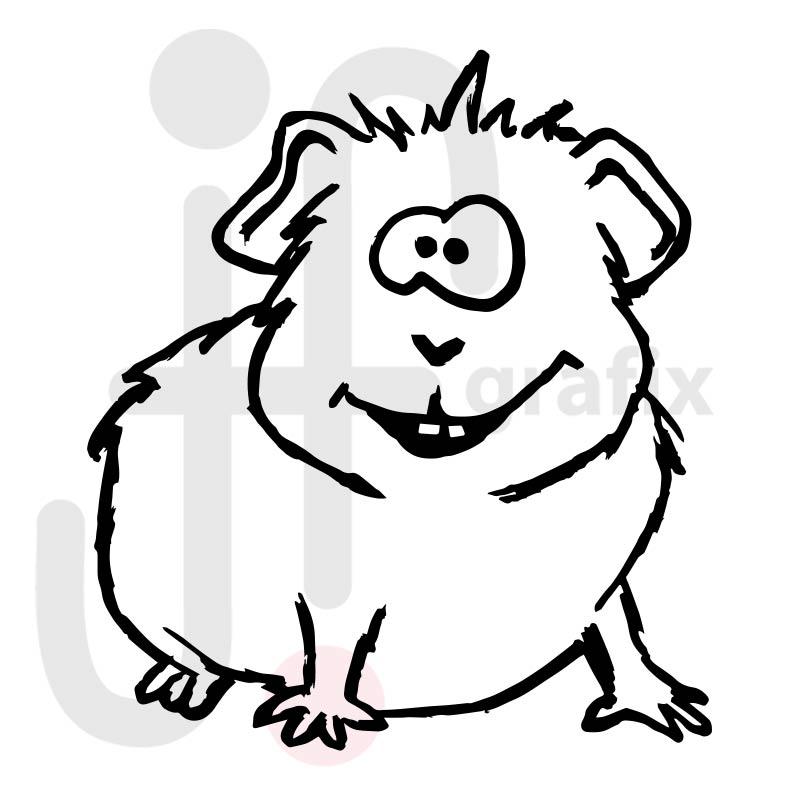 meerschweinchen malvorlage  kinder ausmalbilder
