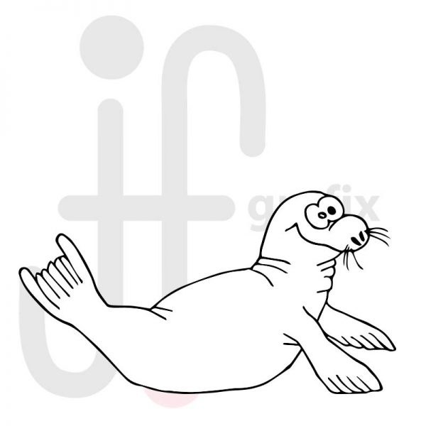 robbe 001  tierisch gut tierbilder
