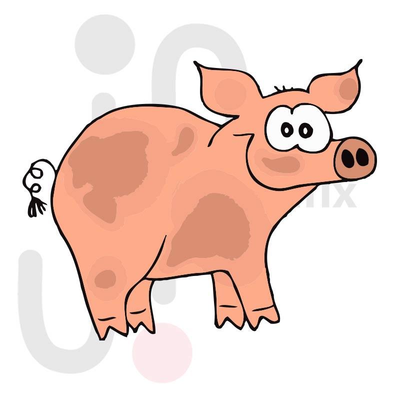 Schwein 011 farbig