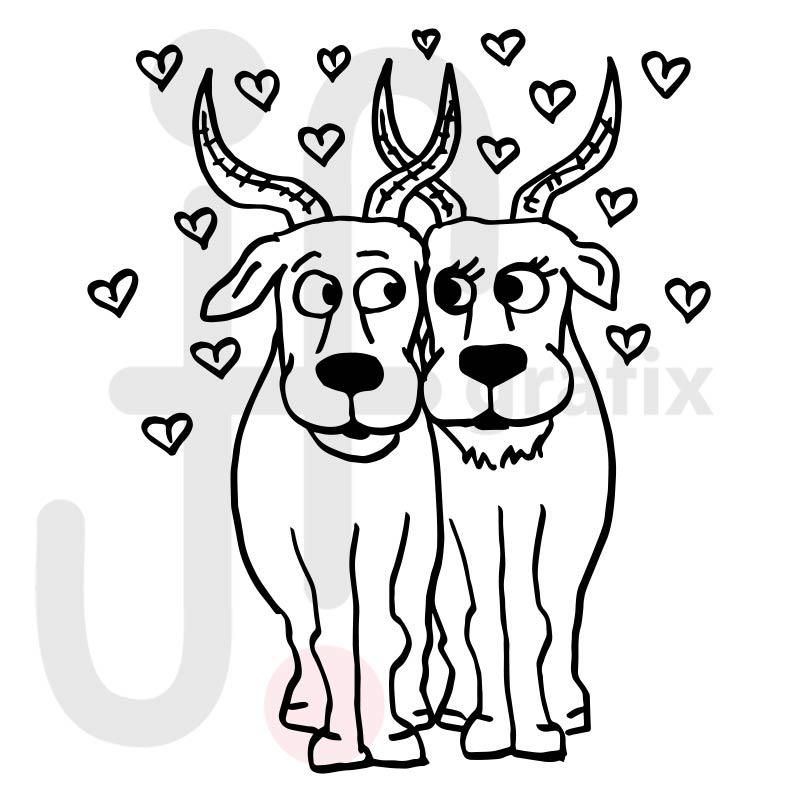 Valentinstag Antilopen 001