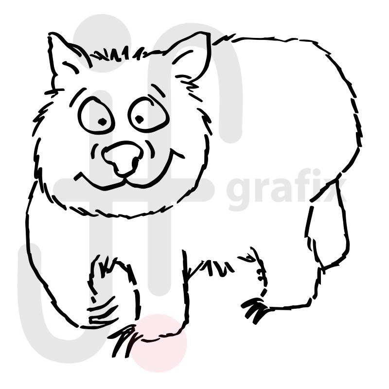 Wombat 001
